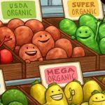Understanding Organic Foods